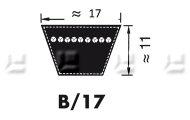 V-snaren Profiel B/17