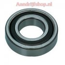 Ball Bearing SS6206-2RS